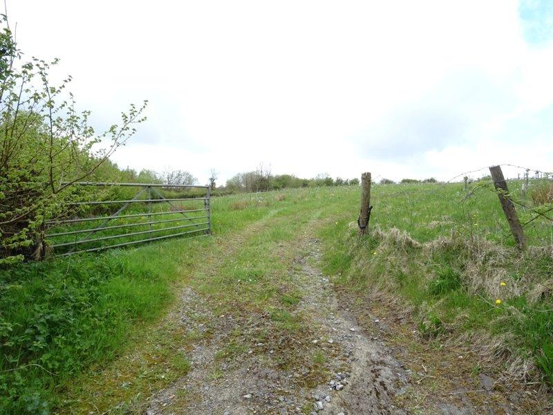 Lot 4: Cairn Wood